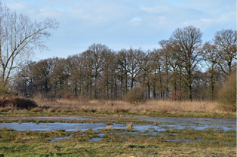 Dorpsraadfoto Schippersdijk Tongelaar